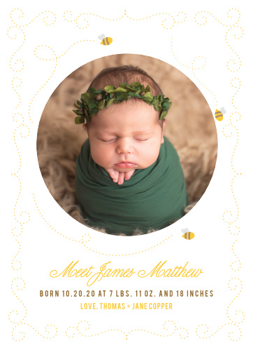 Friendly bees buzz around your child's photo on the Honey Bee Birth Announcements.