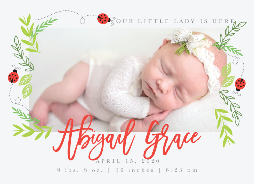 Sweet Ladybugs and greenery create a playful frame for your newborn's photo on the Little Ladybug Birth Announcements.