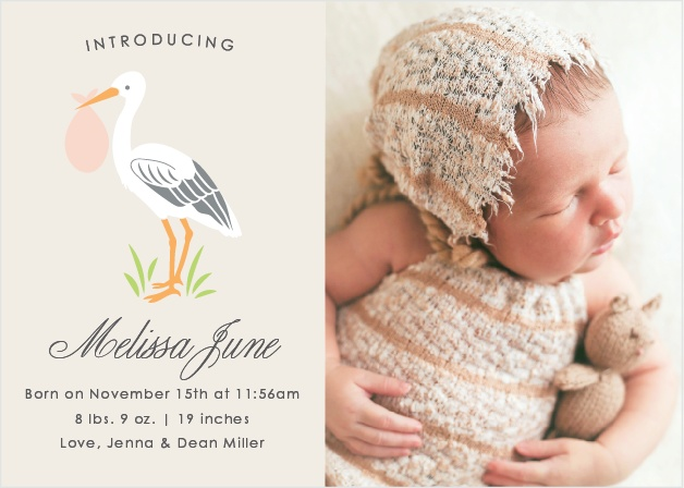 Stoked Stork Birth Announcements
