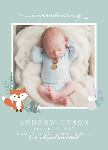 Introduce your newborn with the whimsical charm of the Friendly Forest Birth Announcement.