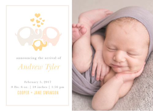 Let your love ones know about the arrival of your newborn with the Baby Elephant Birth Announcements.