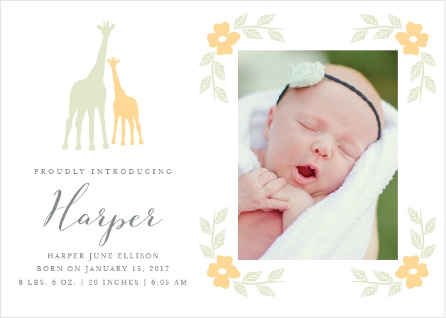 Delicate Giraffe Birth Announcements