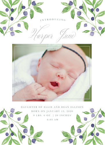 Show off your little one with the Farmer's Market Birth Announcement