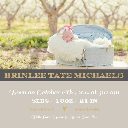 New Introductions Foil Birth Announcements