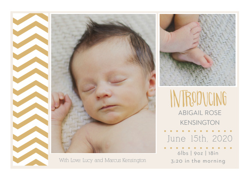 What goes best with chevron? Your baby of course! Customize the fonts and colors and upload your favorite photos to introduce your pride and joy to the world!!