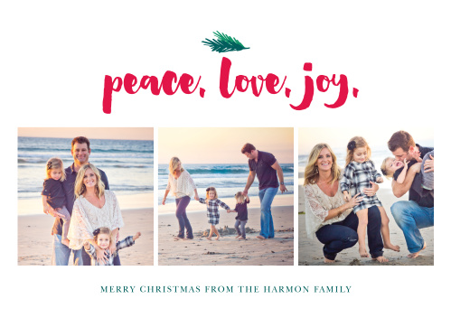 A trio of lovely photos graces the front of our Little Pine Christmas Cards.