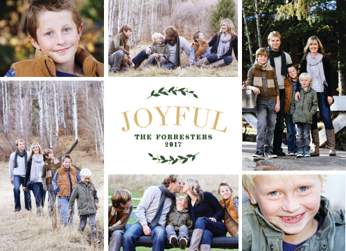 We've decorated the fronts of our Family Portraits Christmas Cards with an assortment of beautiful photos of your family.
