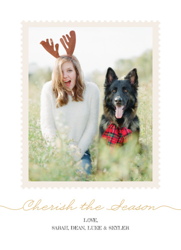 Send your season's greeting with the Polaroid Foil Photo Holiday Cards.