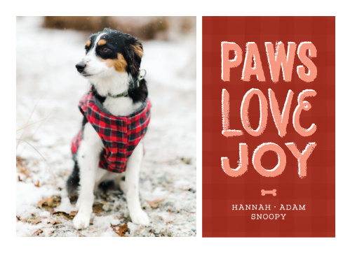 puppy paws holiday cards - Pet Holiday Cards