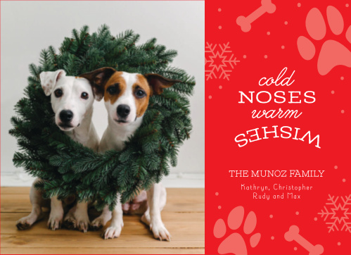 puppy love holiday cards - Dog Holiday Cards