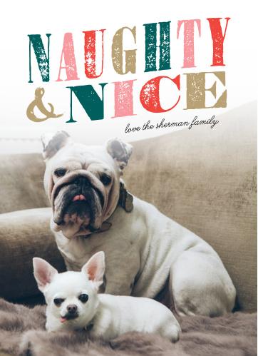 naughty dog christmas cards