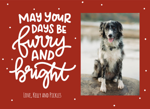 Transform the festive red and swirling text of our Furry & Bright Christmas Cards into your personal holiday well-wishes! With your favorite furry family member adorning the righthand portion of the card, you can be sure that these cards are a lovely addition to your loved ones' homes.