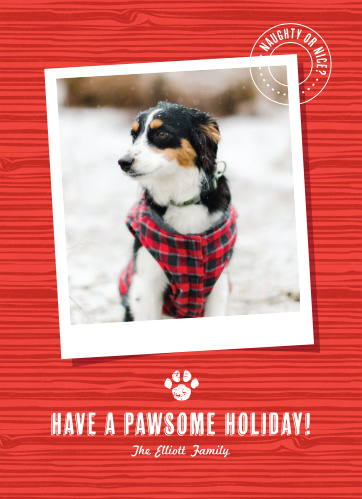 pawsome holiday holiday cards - Pet Holiday Cards