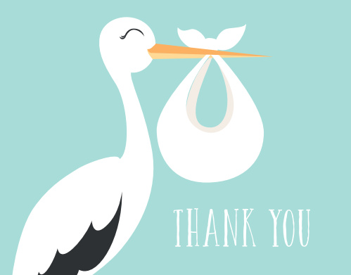 Let the Special Stork baby shower thank you cards deliver you gratitude with a playful stork that can be personalized to match your shower color theme instantly online.