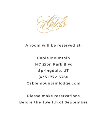 This lovely invitation suite is romantic yet classy. It's simple and clean layout makes it easy for your guests to find out the details of your special day. Order an accommodations card for the extra details. Include transportation and hotel details.