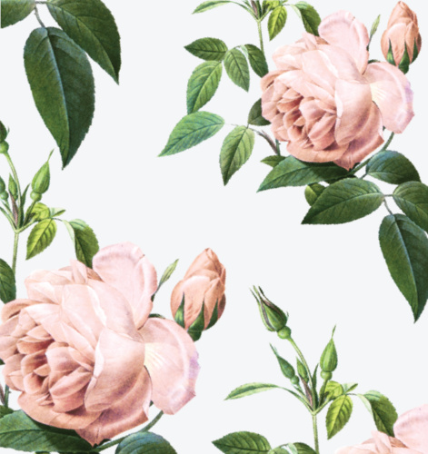 The Roses Envelope Liner will delight your guests with it's elegant and timeless design.